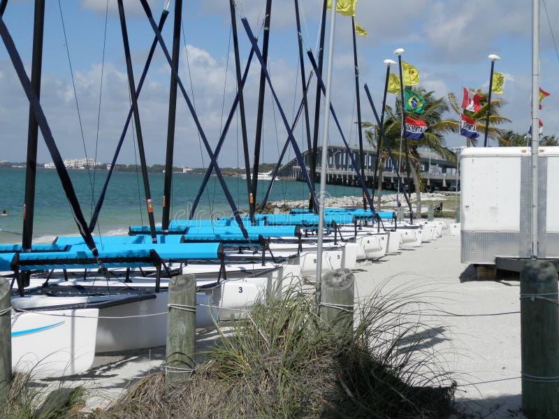 Katamaran i den Biscayne fjärden, Miami, Florida royaltyfri foto