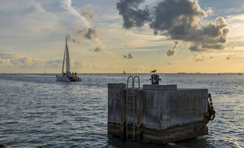 Katamaran, segelnd in Richtung zum Horizont stockfoto
