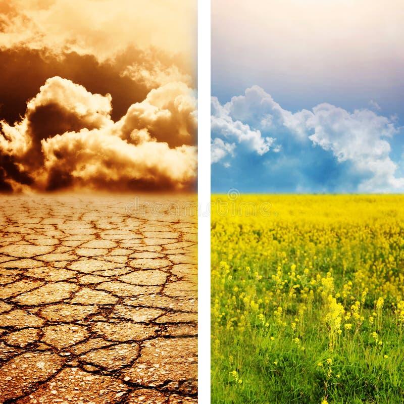 katastrofa ekologiczna zdjęcie royalty free