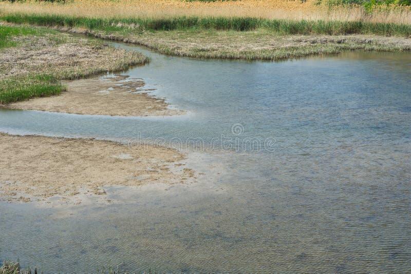 Katastrofalt läge Lågvatten på floden royaltyfri fotografi