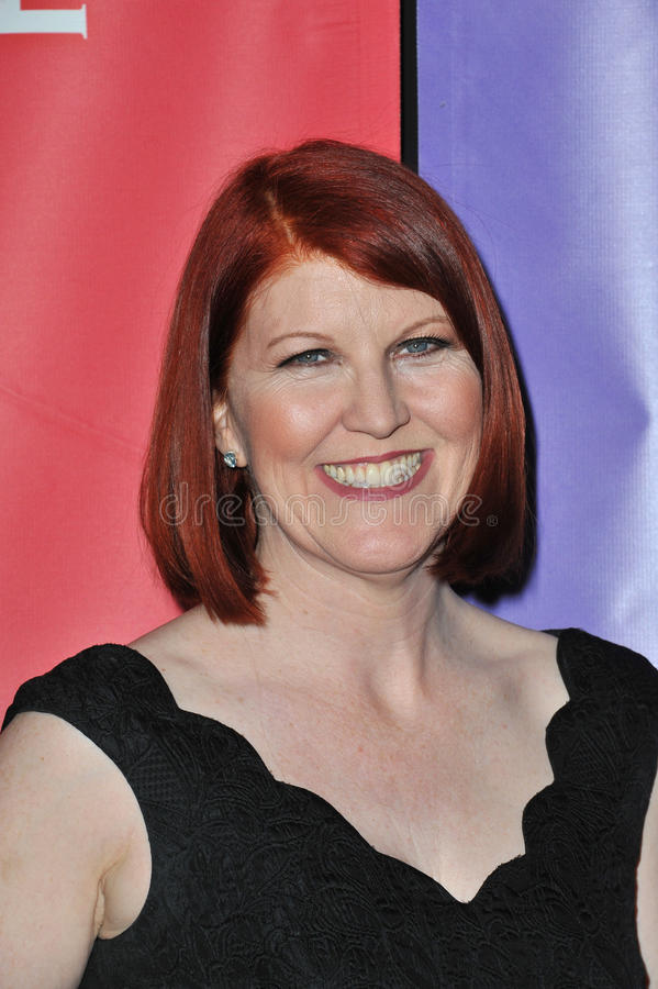 Download Kate Flannery redaktionelles stockbild. Bild von winter - 26360709