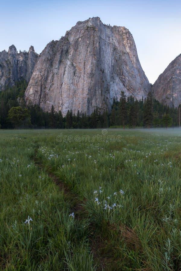 Katedra Kołysa i Katedralne iglicy są wybitnym kolekcją falezy, gurtami i pinaklami lokalizować na Yosemite dolinie, obraz royalty free