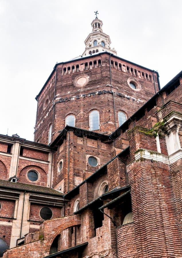 Katedra Pavia, Włochy zdjęcie royalty free