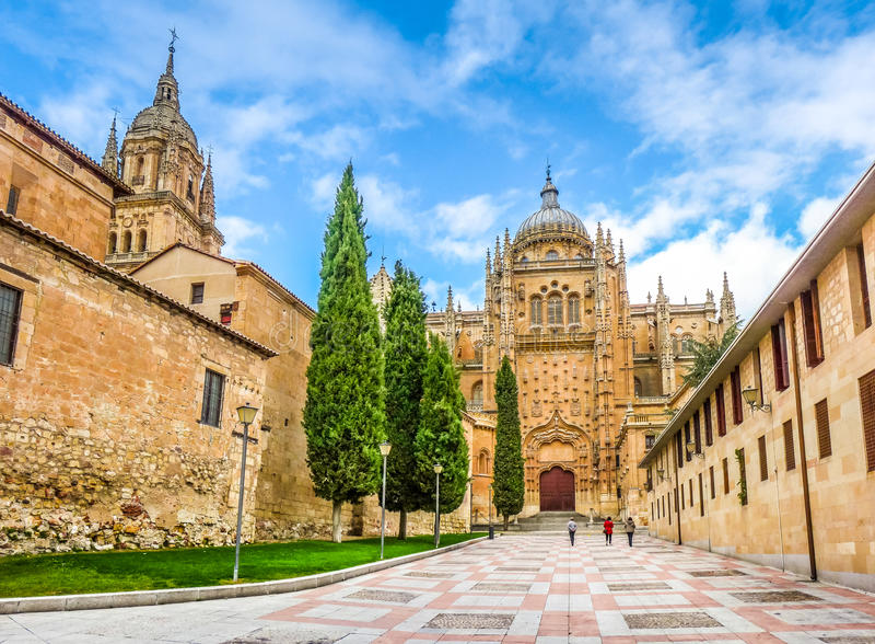 Katedra Salamanca, Castilla y Leon, Hiszpania fotografia royalty free