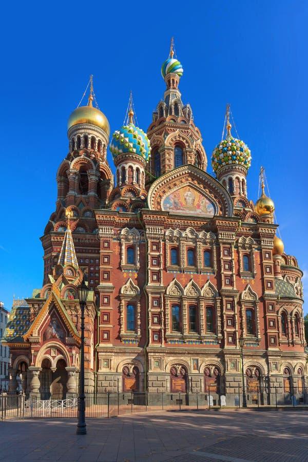 Katedra wybawiciel na Rozlewałam krwi w ranku słońcu, St Petersburg zdjęcia royalty free
