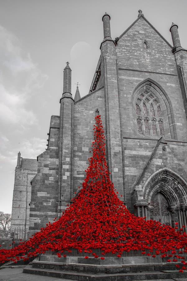 Katedralni maczki zdjęcia stock
