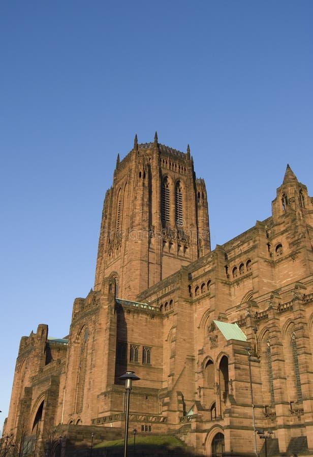 katedralny liverpoolu. obraz royalty free