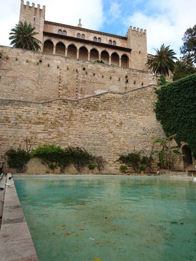 katedralny Mallorca fotografia royalty free