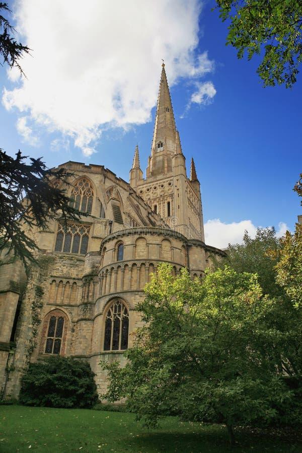 katedralny Norwich zdjęcie stock