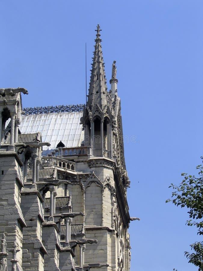 katedralny notre dame fotografia stock
