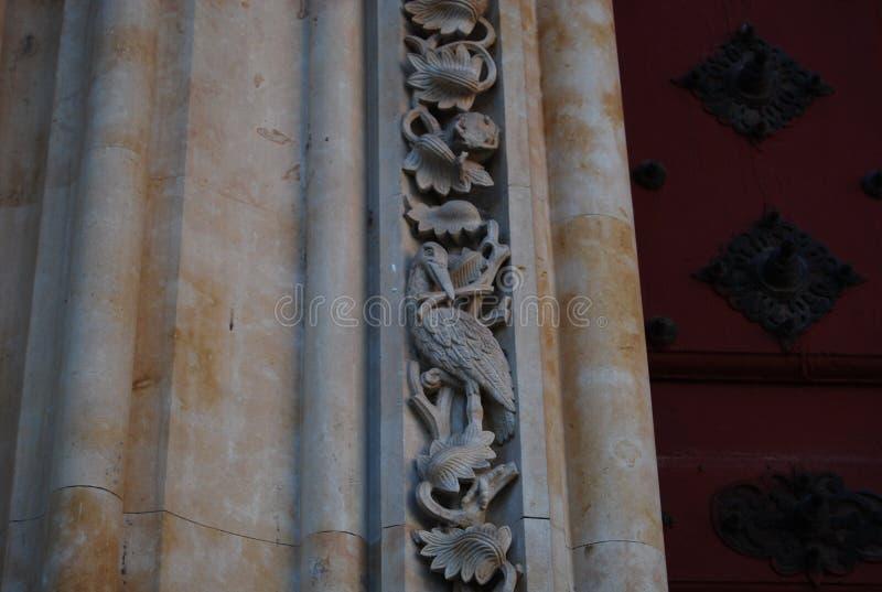 Katedralny Salamanca bocian zdjęcia stock
