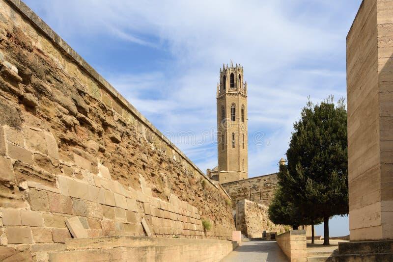 Katedralvyn, La Seu Vella, Katalonien, Spanien royaltyfri fotografi
