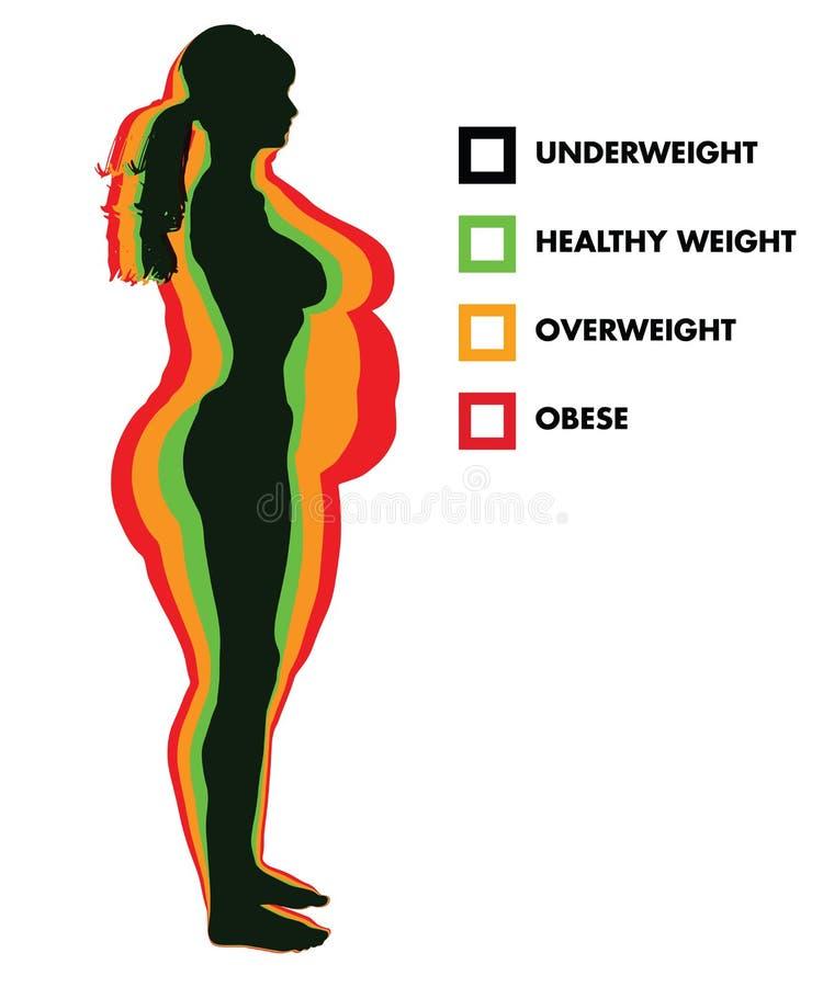 Kategorier för index för kvinnakroppmass BMI stock illustrationer