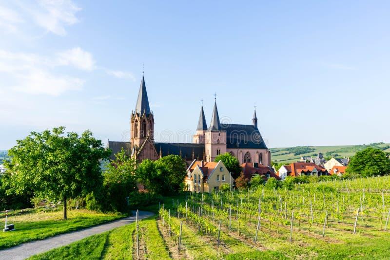 Katharinenkirche in Oppenheim met wijngaarden in de voorgrond royalty-vrije stock foto