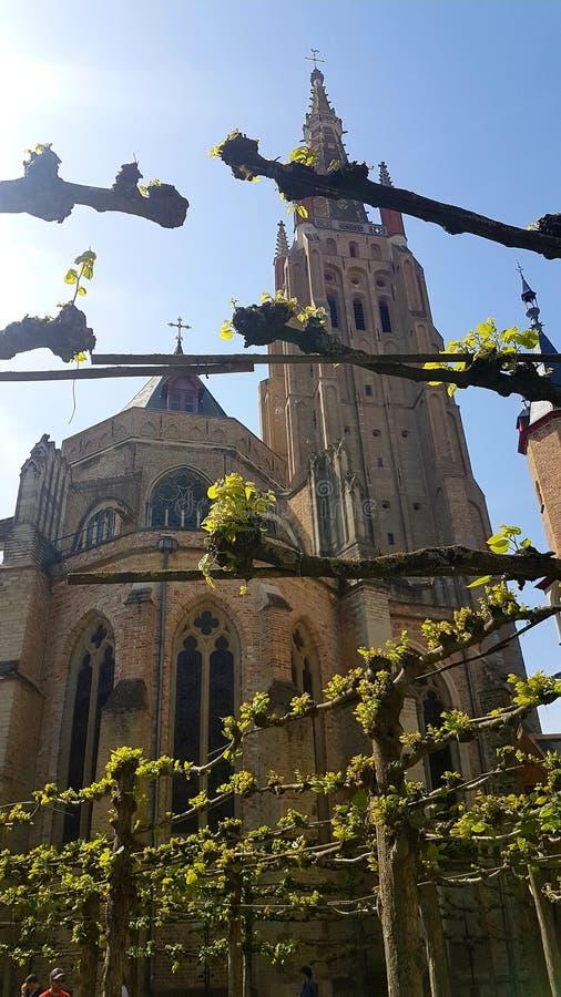 Kathedraal in Brugge royalty-vrije stock foto