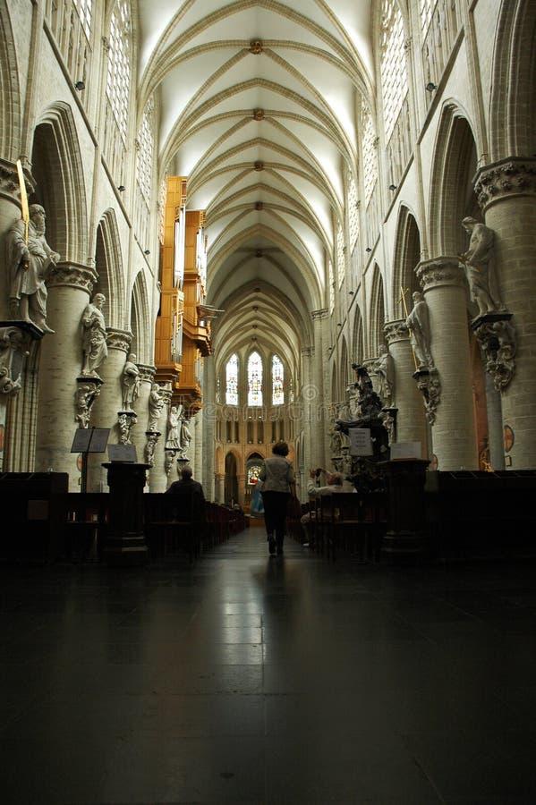 Kathedraal in Brussel stock foto's