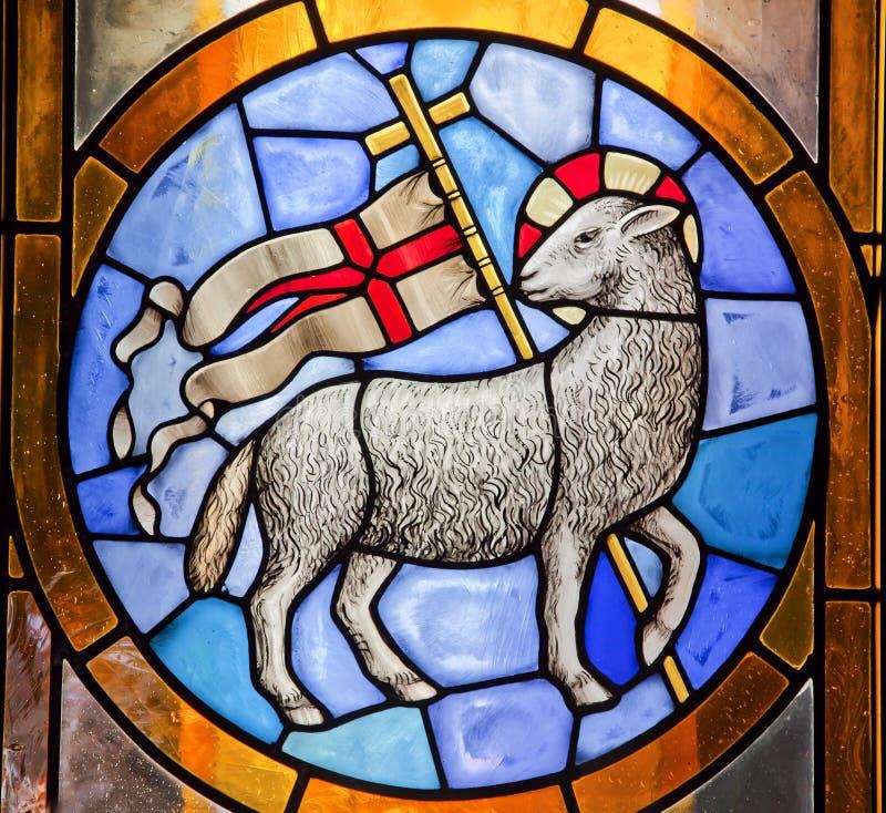 Kathedraal Florence van Duomo van het Gebrandschilderd glas van het lam de Dwars royalty-vrije stock afbeelding