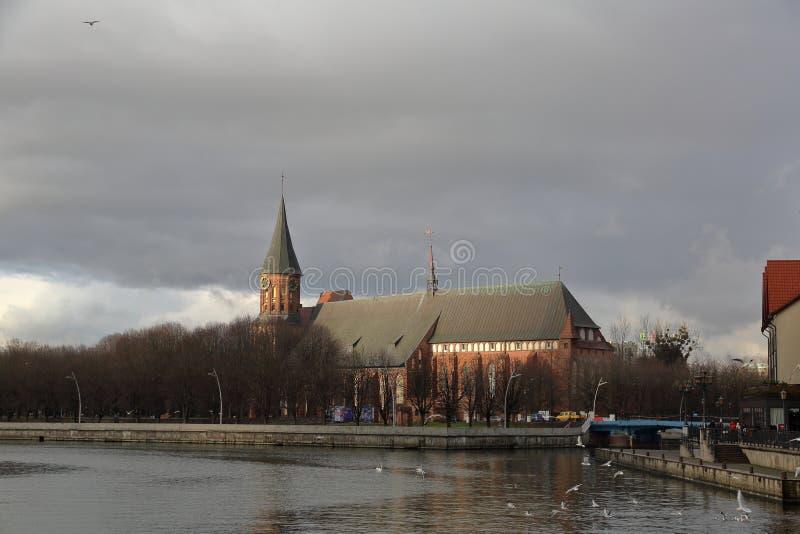 Kathedraal in Kaliningrad, Rusland royalty-vrije stock afbeelding