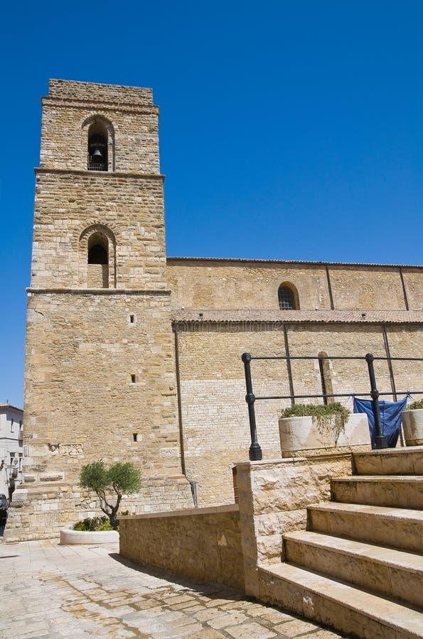 Kathedraal van Acerenza Basilicata Italië stock afbeelding