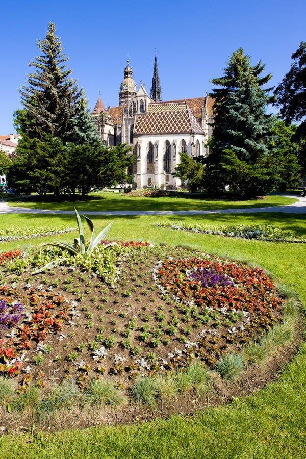 Kathedraal van Heilige Elizabeth, Kosice, Slowakije stock foto