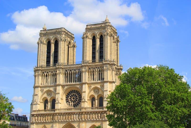 Kathedraal van Notre Dame in Parijs na de brand van 15 4 2019 royalty-vrije stock foto's