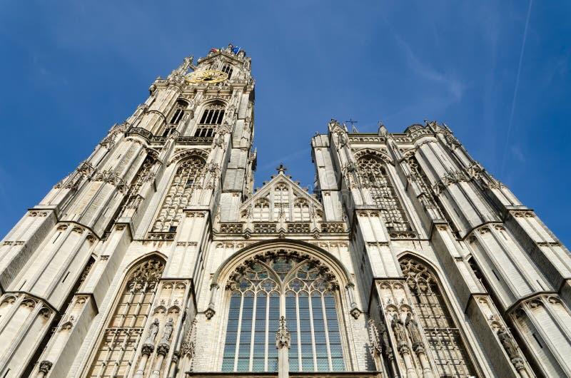 Kathedraal van Onze Dame in Stadscentrum van Antwerpen royalty-vrije stock foto's