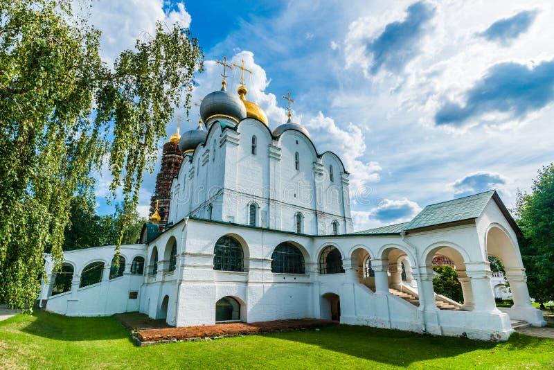 Kathedraal van Onze Dame van Smolensk stock foto's