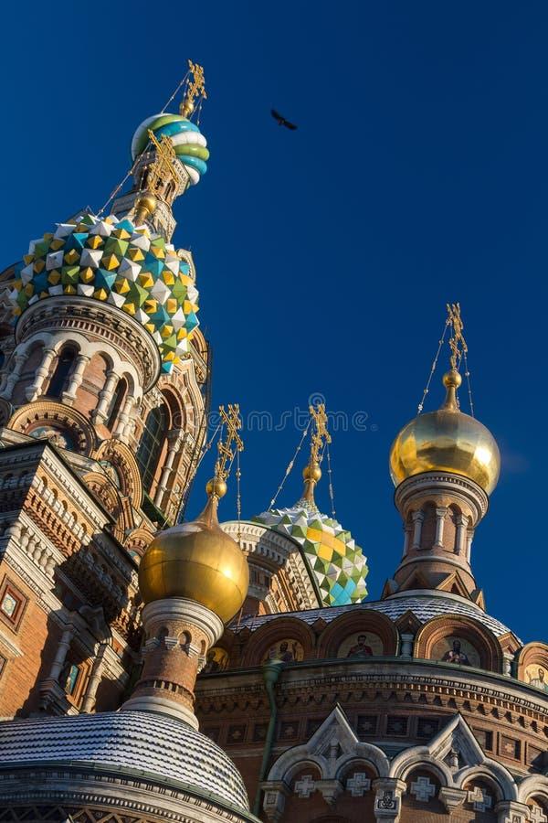 Kathedraal van Onze Verlosser op Gemorst Bloed in St. Petersburg royalty-vrije stock fotografie