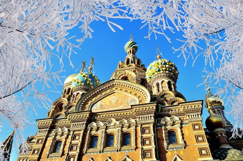 Kathedraal van Onze Verlosser op Gemorst Bloed in St. Petersburg, Rusland stock foto