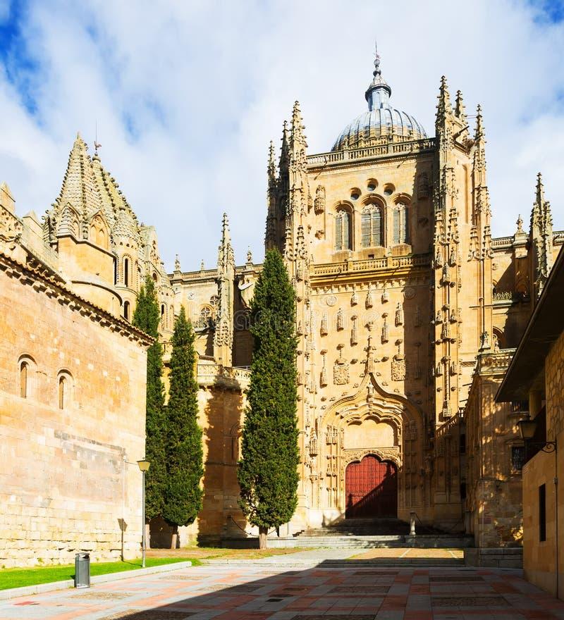 Kathedraal van Salamanca royalty-vrije stock foto