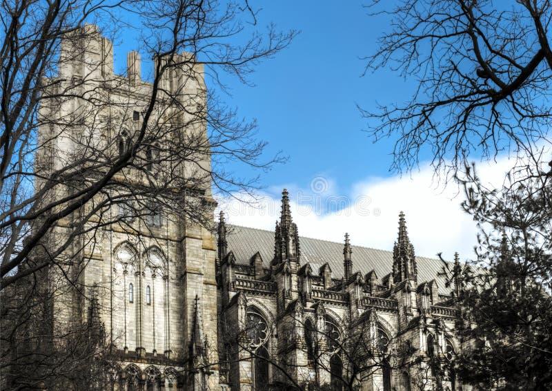 Kathedraal van St. John Goddelijk stock afbeeldingen