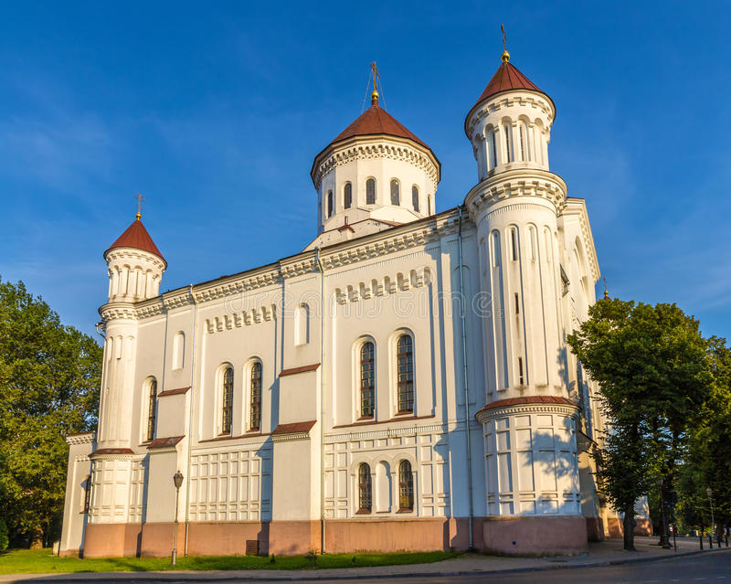 Kathedrale des Theotokos in Vilnius stockbild