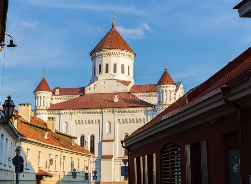 Kathedrale des Theotokos in Vilnius lizenzfreie stockbilder