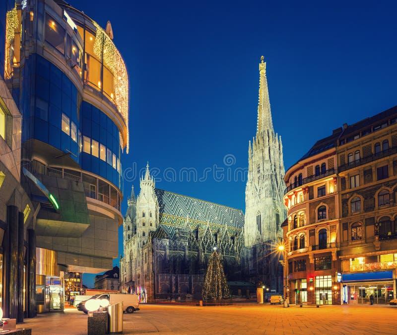 Kathedrale St Stephan und Weihnachtsbaum lizenzfreie stockbilder