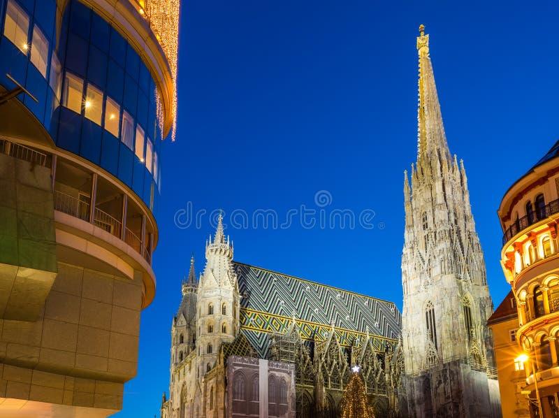 Kathedrale St Stephan und Weihnachtsbaum lizenzfreie stockfotografie