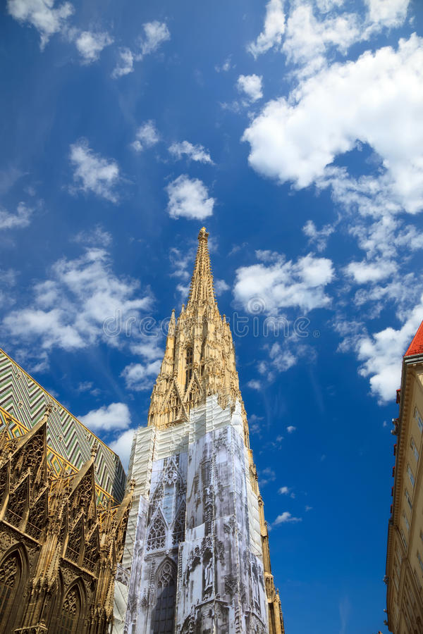 Kathedrale Str.-Stephan lizenzfreies stockfoto