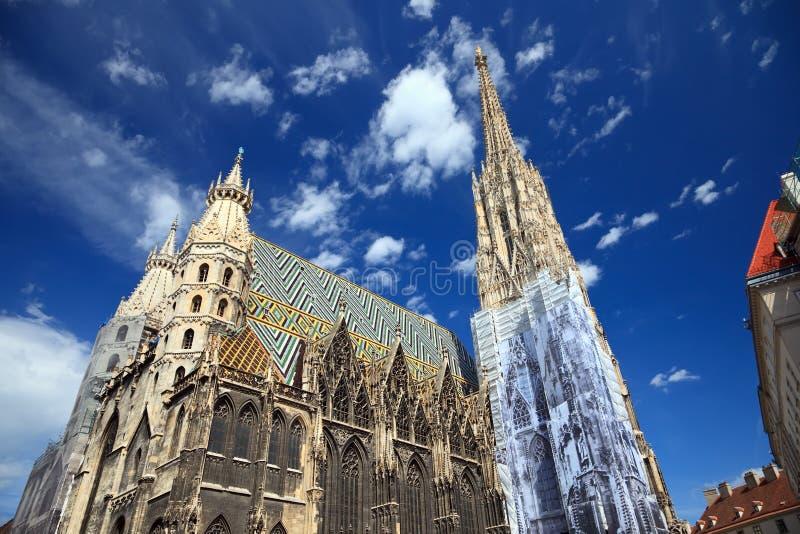 Kathedrale Str.-Stephan in Wien, Österreich stockfoto