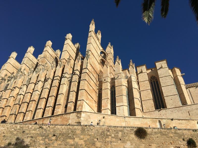 Kathedrale von Mallorca lizenzfreies stockfoto