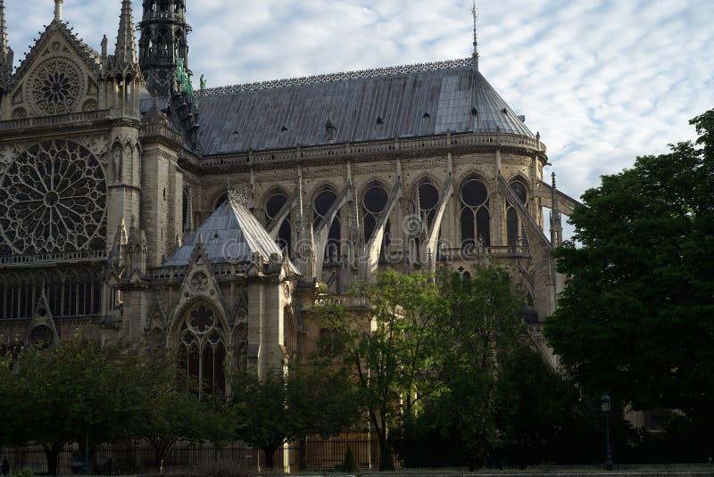 Kathedrale von Notre Dame, Seitenansicht stockfotografie