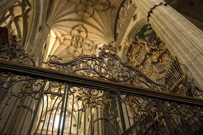 Kathedrale von Salamanca. Spanien stockfotos