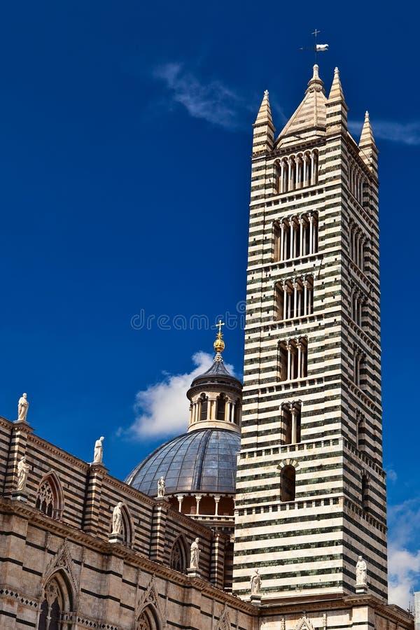 Kathedralekontrollturm in Siena. lizenzfreies stockbild