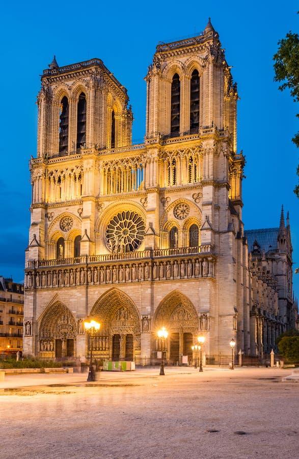 Kathedralenachtansicht Notre Dame de Paris lizenzfreies stockfoto