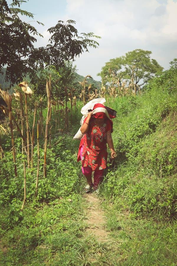 Kathmandu, Nepal - 22 de setembro de 2016: Mulher nepalesa na roupa tradicional que leva a carga pesada nela para trás em uma vil imagens de stock