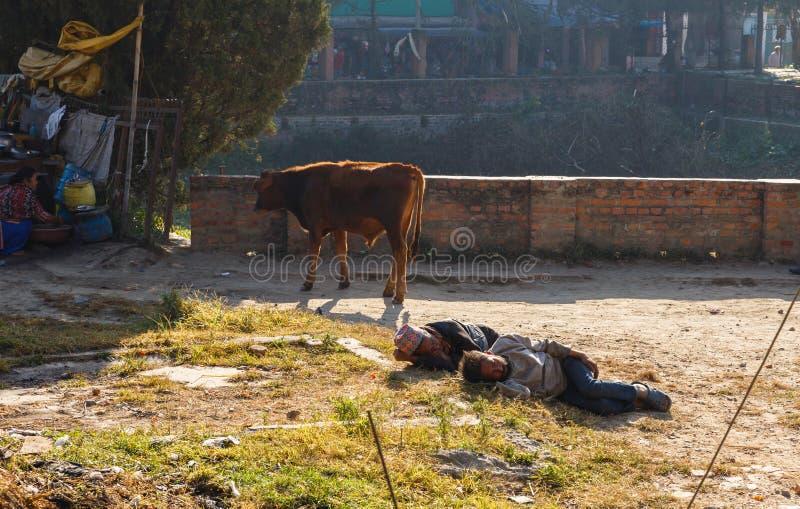 Nepalese men sleep on the grass. Kathmandu, Nepal - November 13, 2016: Two homeless Nepalese men sleep on the grass near the Swayambhunath temple in Kathmandu. A stock image