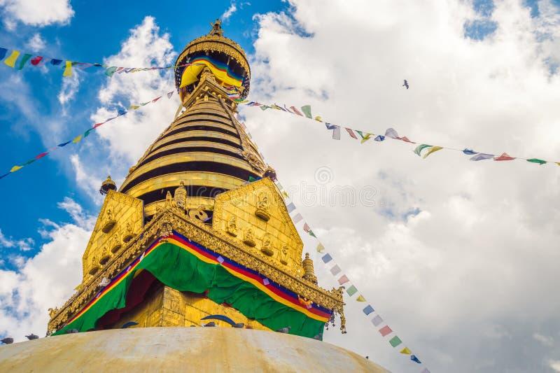 kathmandu nepal stupa arkivfoton