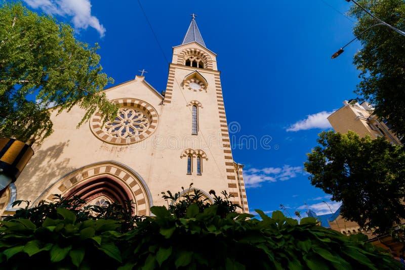 Katholische Kathedralen-Basilika mit einem hohen Helm Landschaft gegen den blauen Himmel Im Vordergrund sind die Kronen von Bäume lizenzfreie stockbilder