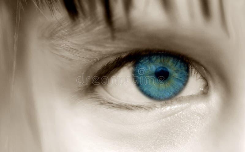 Kathryns Auge Stockfotos