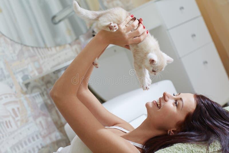 Katje op zijn handen royalty-vrije stock afbeelding