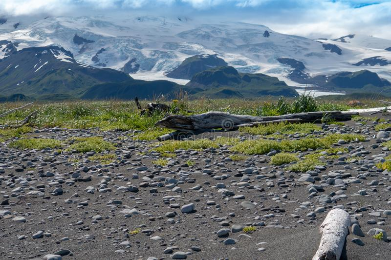 Katmai National Park in Alaska, scenery of rocks, lichen and driftwood with large glacier mountains royalty free stock image