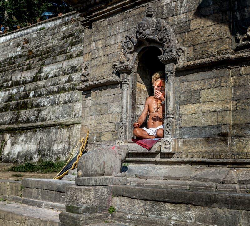 Katmandou, Népal - 21 septembre 2016 : Portrait d'un homme saint de Sadhu avec le visage peint dans le temple de Pashupatinath à  photo libre de droits
